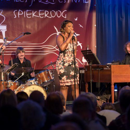 Dirk Van der Linden Trio + Denise Gordon